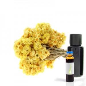 Smilj - Immortelle, eterično olje (Helichrysum italicum)