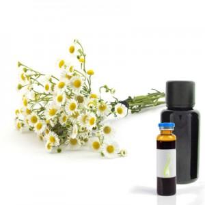 Kamilica - nemška, eterično olje (Matricaria recutita)
