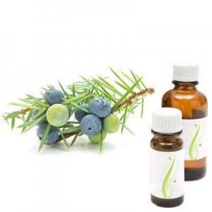 Brin, eterično olje (Juniperus communis)