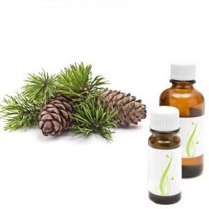 Bor, eterično olje (Pinus sylvestris)