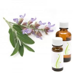 Muškatna kadulja, eterično olje (Salvia sclarea)
