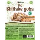 SHIITAKE goba (Lentinula edodes), v prahu (BIO)
