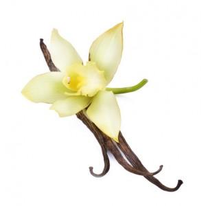 Sladka vanilija (Parfumsko olje)