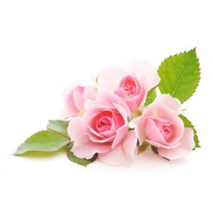 Maroška vrtnica (Parfumsko olje)